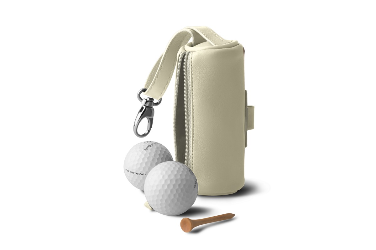 Golf Ball Carrying Case