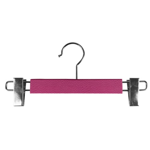 Hanger with clips