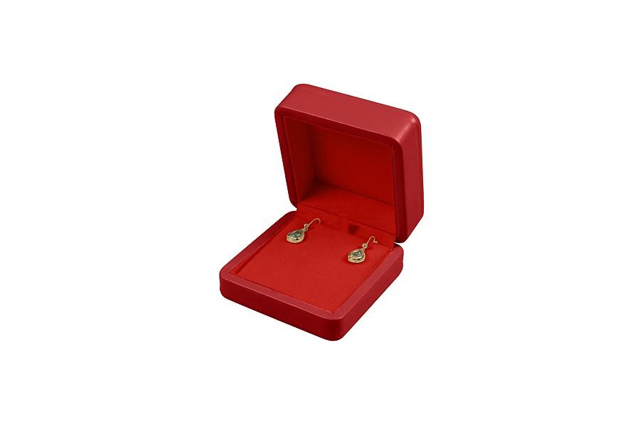 Earring case