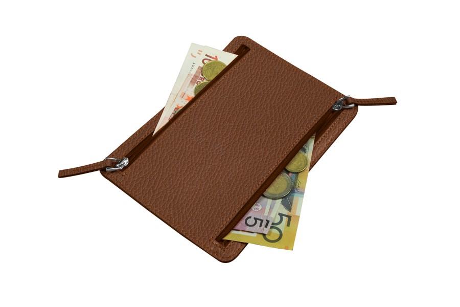 Travel currencies case