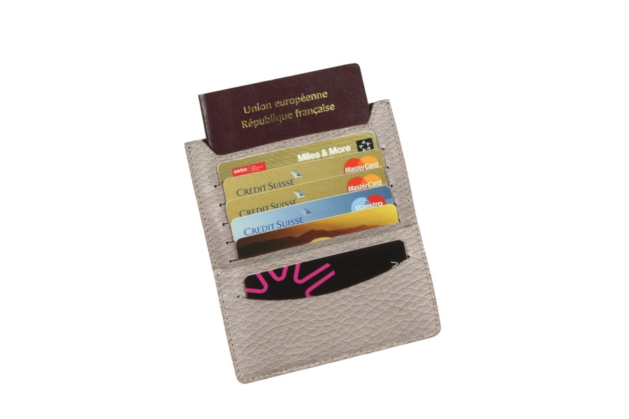 Train travel wallet