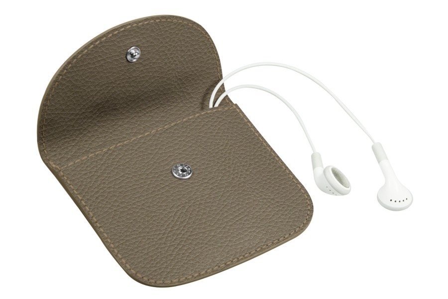 Case with flap closure for earphones